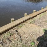 Notice how the ground is several inches below the cap? Not good! Soil and vegetation should be build up to where water can flow over the seawall and not pool up behind it.