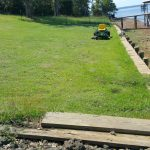 The Jamur Zoysia grass is taking well on the seawall.