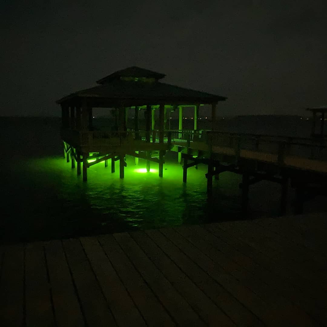 Here fishy fishy says the underwater lights at the Toledo Bend Cabin boat house.  ToledoBendCabins.com  #toledobendcabin #toledobendlake #toledobend
